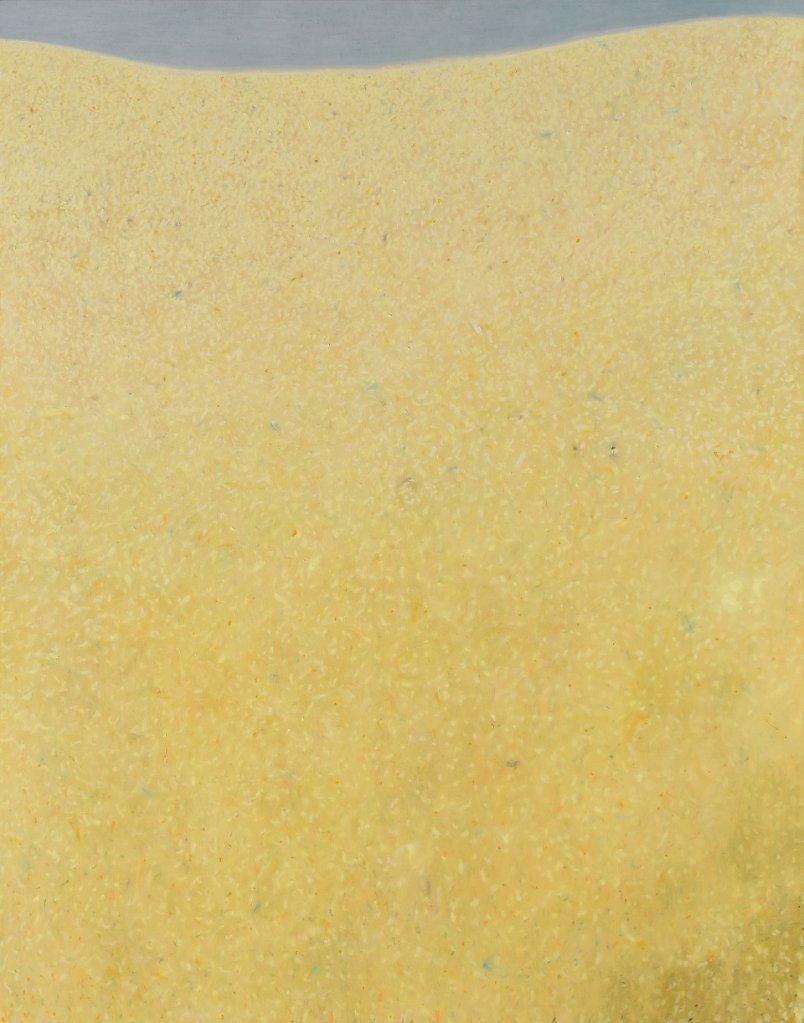 20Grande-porzione-di-paesaggio-2016-olio-e-pastello-ad-olio-su-tela-1405x110-cm.jpeg