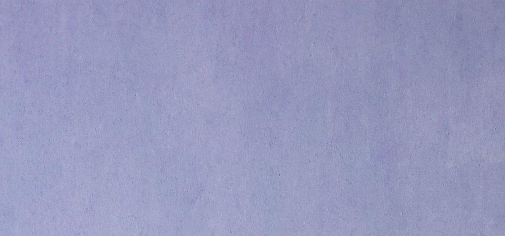 Atmosfere-del-pomeriggio-2020-pastello-ad-olio-su-tela-100x65-cm.jpg